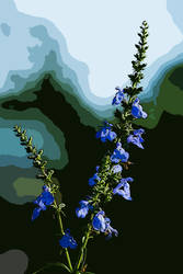 flower485.1 by redbeard31