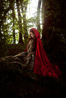 Little Red Riding Hood by RahLuna