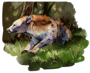 Hyena 2.0 by lauraacan