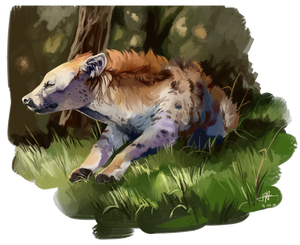 Hyena 2.0