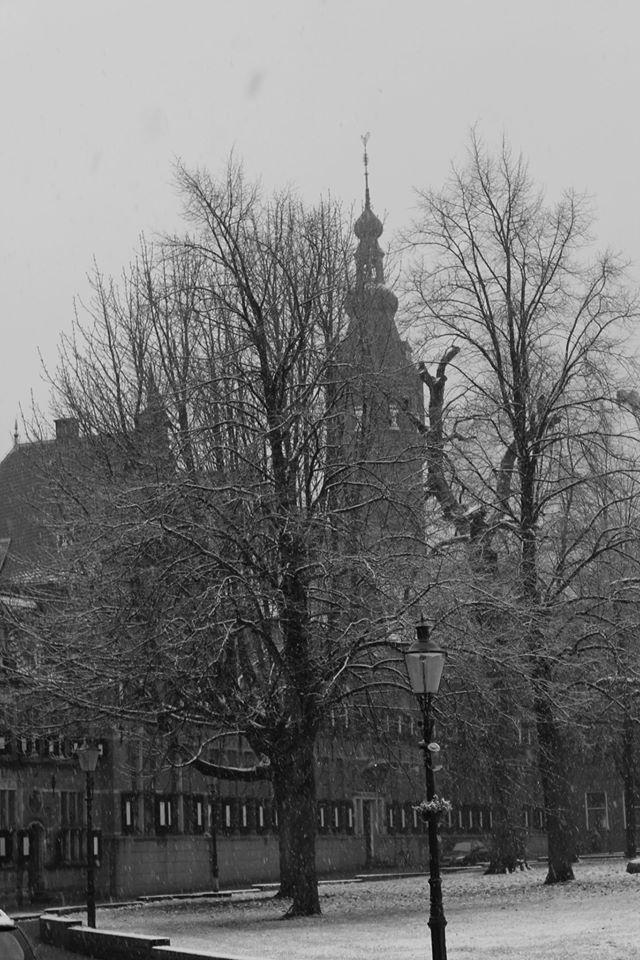 Winter by Alaersu-Aetris