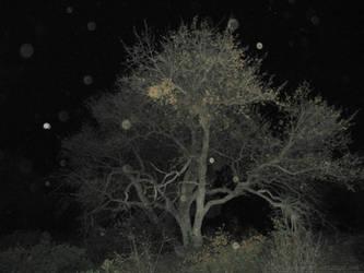 Haunted Tree by NekoMarik