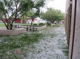 Phoenix Hailstorm II by NekoMarik