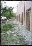 Phoenix Hailstorm III