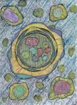 Imaginary Microorganisms