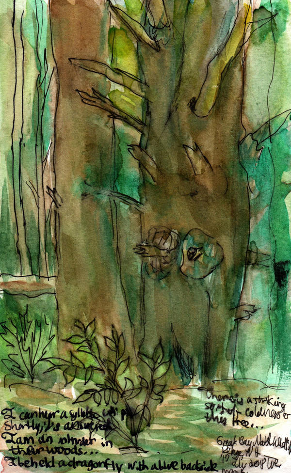 Tree Study at Great Bay - WWM Day 17 by NekoMarik