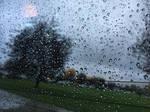 Rain Through A Window