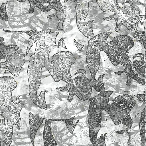 CinaBench Scheme 559 by Twingripriot