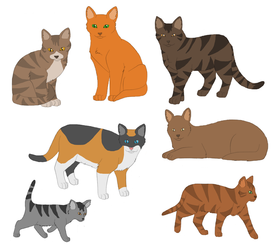 Warrior Cats Kit To Leader Bloodclan: ThunderClan Cats By Nightshine156 On DeviantArt