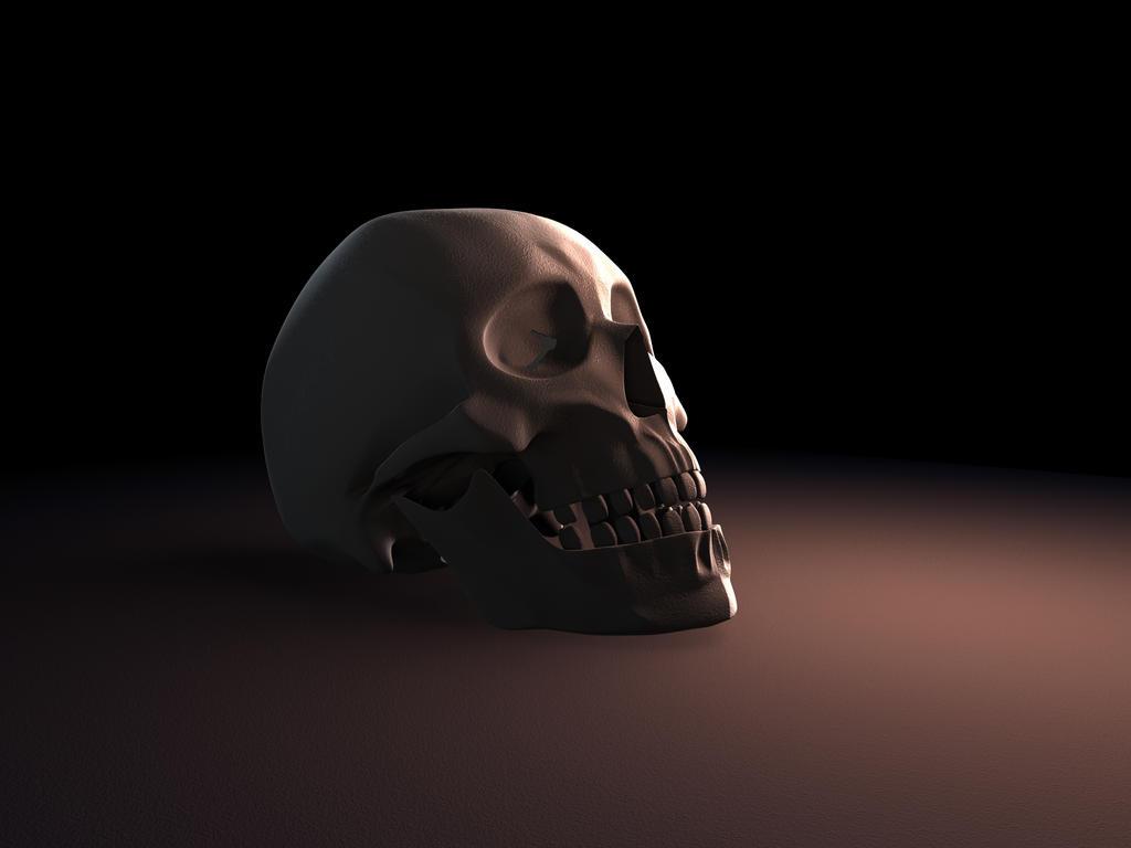 Human Skull by Jinshin