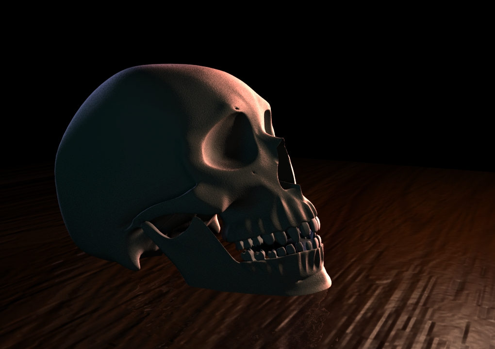 Human Skull II by Jinshin