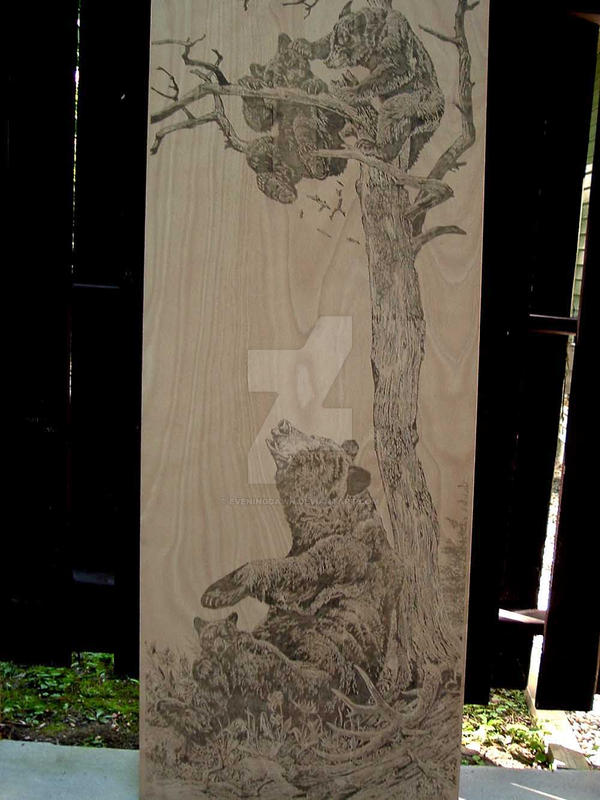 Wood burned bear door by eveningdawn