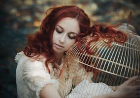 The Birds Have Flown by MariannaInsomnia