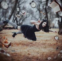 Down The Rabbit Hole by MariannaInsomnia