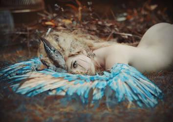 Birdy by MariannaInsomnia