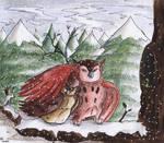 Loving Owls in Winter