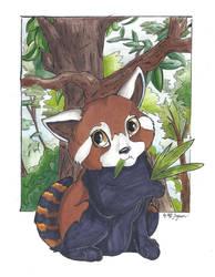 Little Firefox by Faelis-Skribblekitty