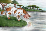 Brightheart - The Lost Face