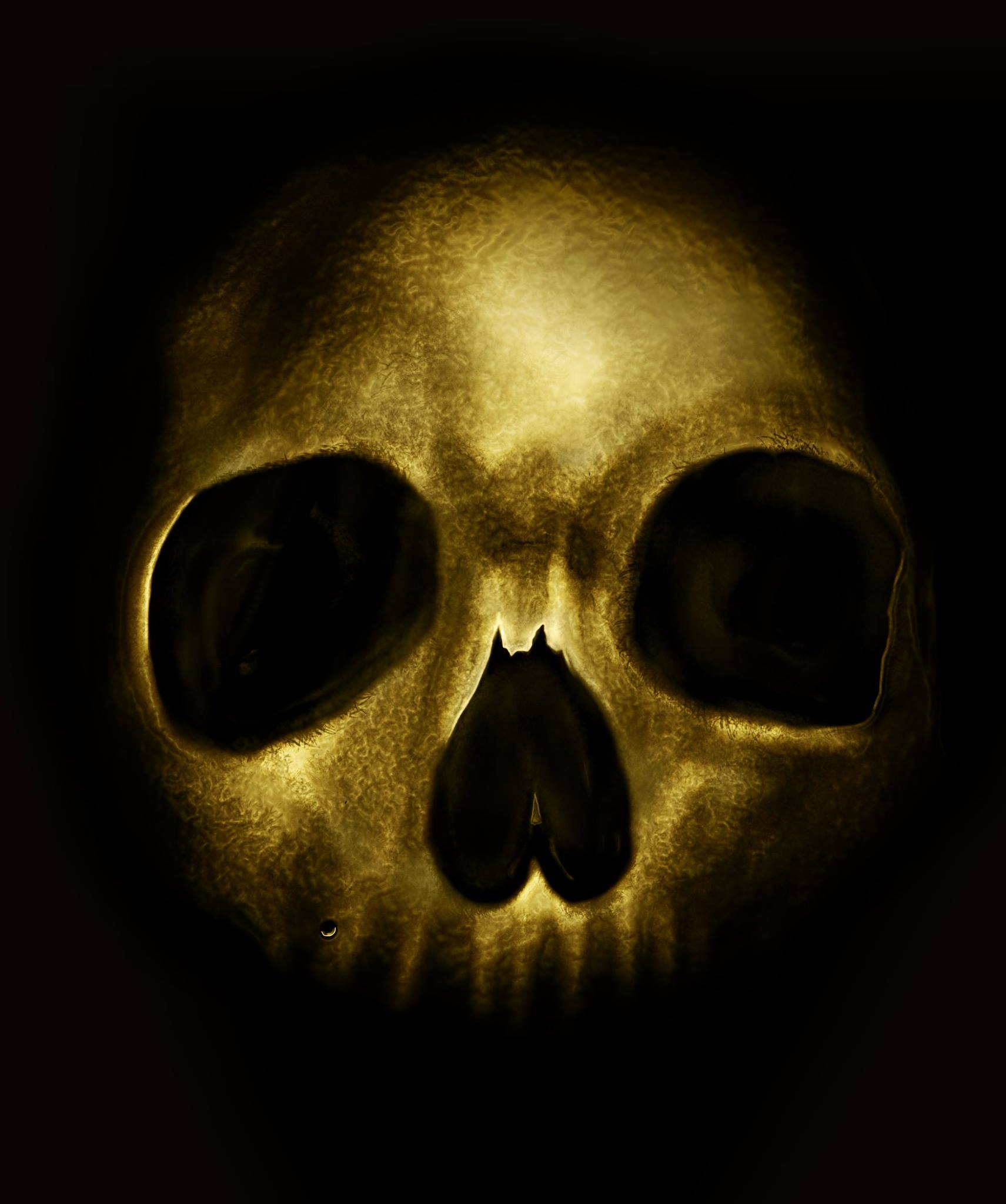 Golden Skull Realistic Painting By NickAce