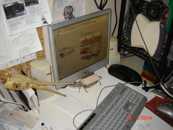 Desktop 1 by verdigrisjester