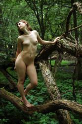 Wood Nymph: Amid the Green by Salemburn