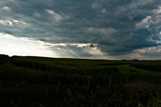 Storms in the Fields
