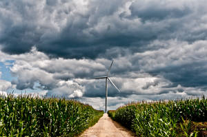 Welcome to the Wind Farm