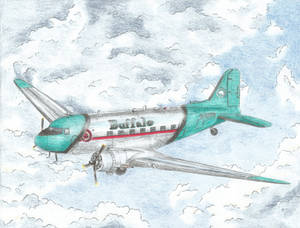 C-FDTD Heritage Livery ''The Airliner'' (3/5)