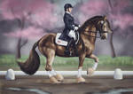 HARPG World Cup   Dressage   Main Entry