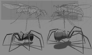 Perspective Insect Studies - Draw Through
