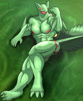 ADOPTED CHARACTER: Sage Simmons the Sceptile