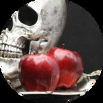 Red Delicious Apple (Malus domestica) by AnniverseStash