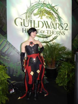 Guild Wars 2 Riel Darkwater 2015