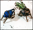 bugbots_by_krepta_draconis-dcnas11.png