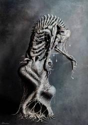 Metamorphosis by BRHN27