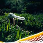 Crocodile in Grass by Cyril-Helnwein