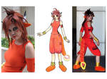 Red XIII costume