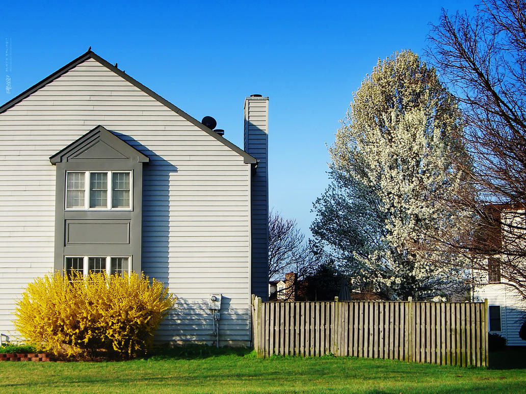 House And A Dogwood Tree By Thenonhacker On Deviantart