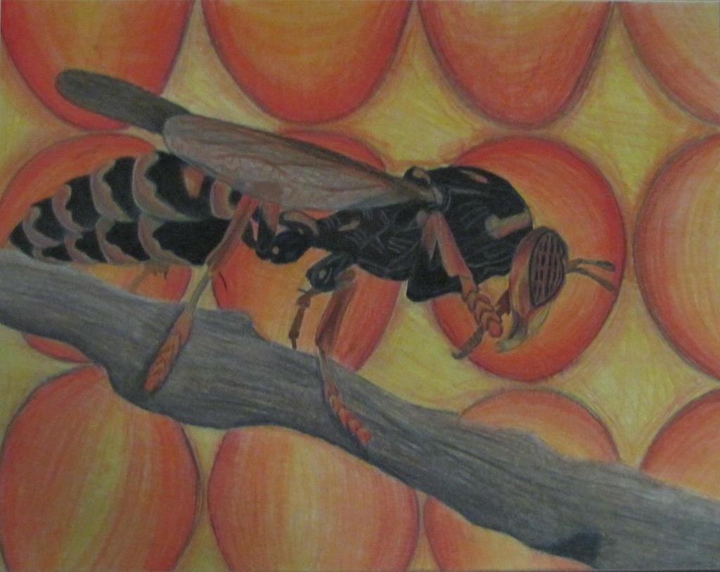 Wasp by xBlackHoleSunxX on deviantART