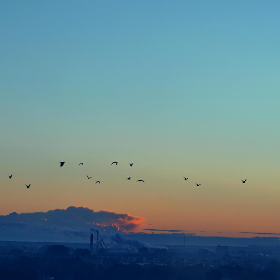 peaceful morning by artahh