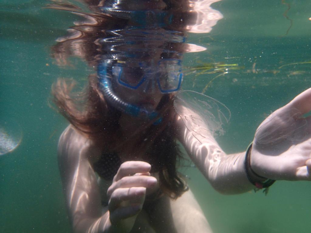 Jellyfish by MoonstarMia