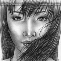 Windswept by MJWilliam