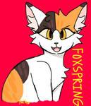 foxspring