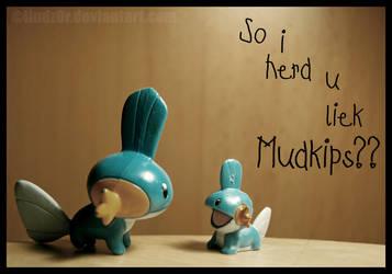 So i herd u liek Mudkips?? by Lindz0r