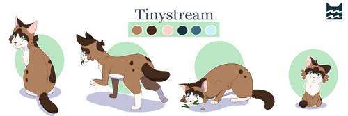 Tinystream