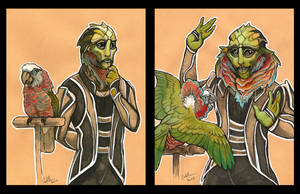 Drell with Hawkhead Parrot