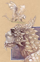Halcoryx: Study of a Mountain Dragon by caramitten