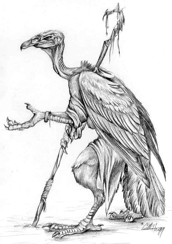 Vulture Line Drawing Vulture Beggar -- 2001...