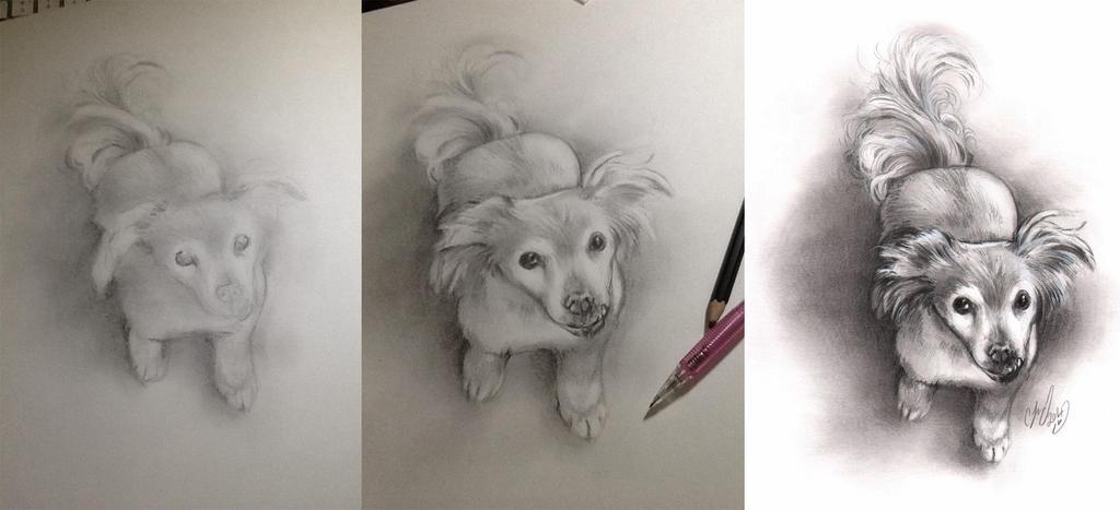 puppy sketch by CassandraJames