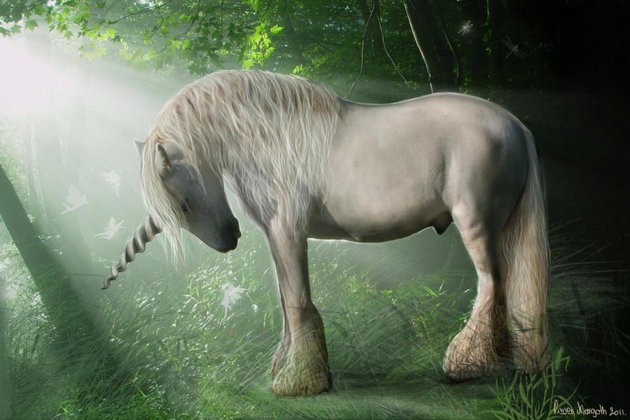 El unicornio Spirit_of_the_forest_by_ravenmorgoth-d3amaet